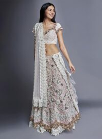 Nivedita Saboo Couture - Lightness - The Champagne Dream - Main