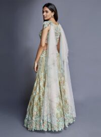 Nivedita Saboo Couture - Lightness - The Moonbeam - Back