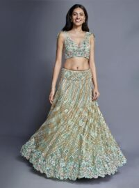 Nivedita Saboo Couture - Lightness - The Moonbeam - Main