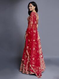 Nivedita Saboo Couture - Lightness - The Scarlett Glimmer - Side